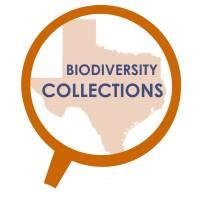BiodiversityCollections_logo